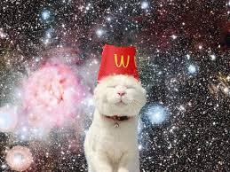 Mcd cat